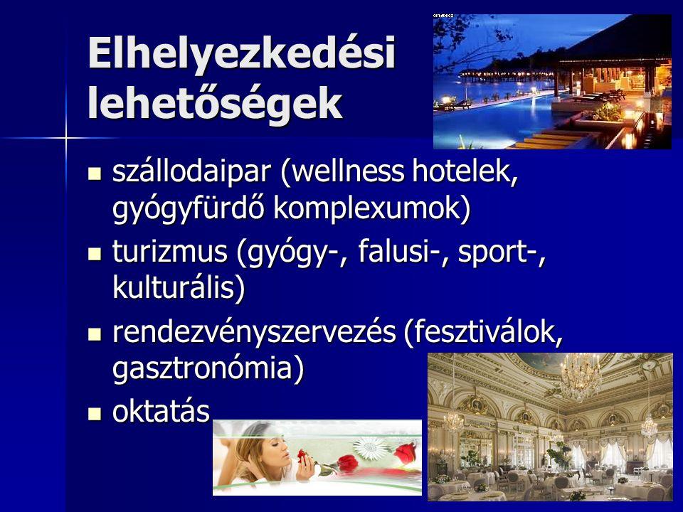 Elhelyezkedési lehetőségek  szállodaipar (wellness hotelek, gyógyfürdő komplexumok)  turizmus (gyógy-, falusi-, sport-, kulturális)  rendezvényszervezés (fesztiválok, gasztronómia)  oktatás