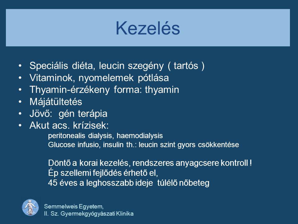 Semmelweis Egyetem, II. Sz. Gyermekgyógyászati Klinika Kezelés •Speciális diéta, leucin szegény ( tartós ) •Vitaminok, nyomelemek pótlása •Thyamin-érz