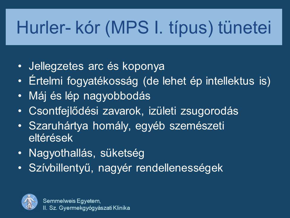 Semmelweis Egyetem, II. Sz. Gyermekgyógyászati Klinika Hurler- kór (MPS I. típus) tünetei •Jellegzetes arc és koponya •Értelmi fogyatékosság (de lehet