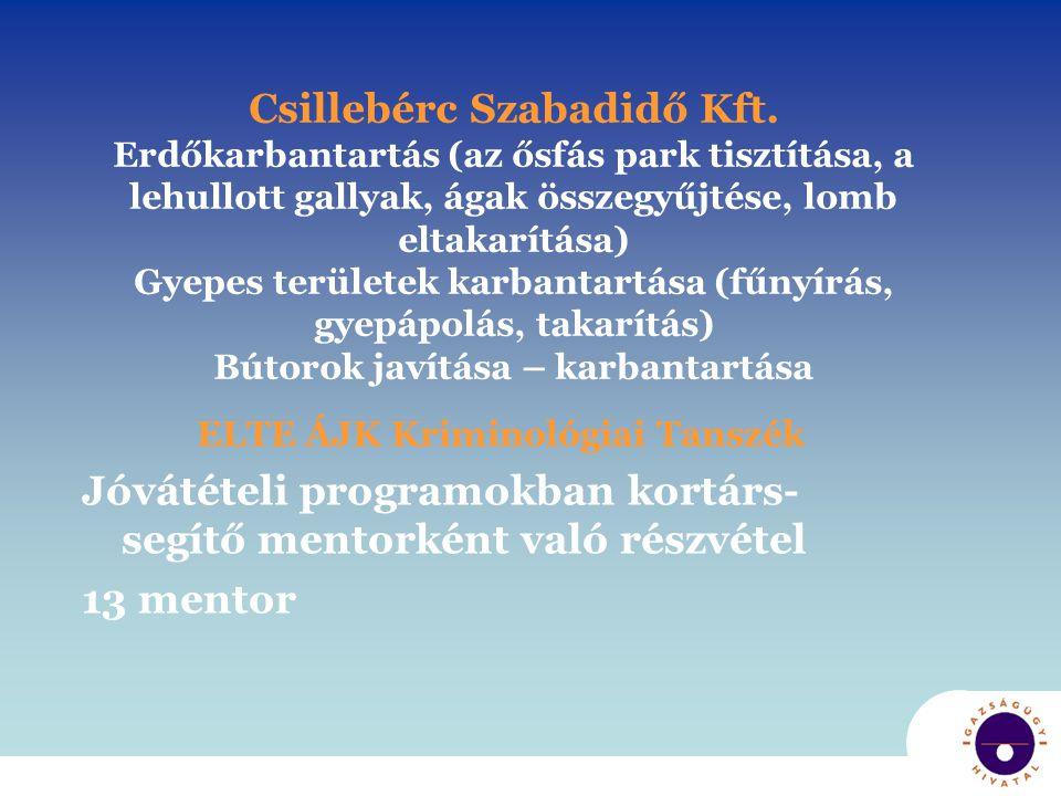 Csillebérc Szabadidő Kft. Erdőkarbantartás (az ősfás park tisztítása, a lehullott gallyak, ágak összegyűjtése, lomb eltakarítása) Gyepes területek kar