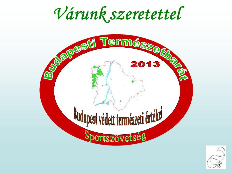 Ismerjük meg Budapest és környéke természeti értékeit. Hármashatár-hegy Zöld Bázis Várunk szeretettel 2013.01.05-én Szombaton. Hegység: Budai hg. Útvo