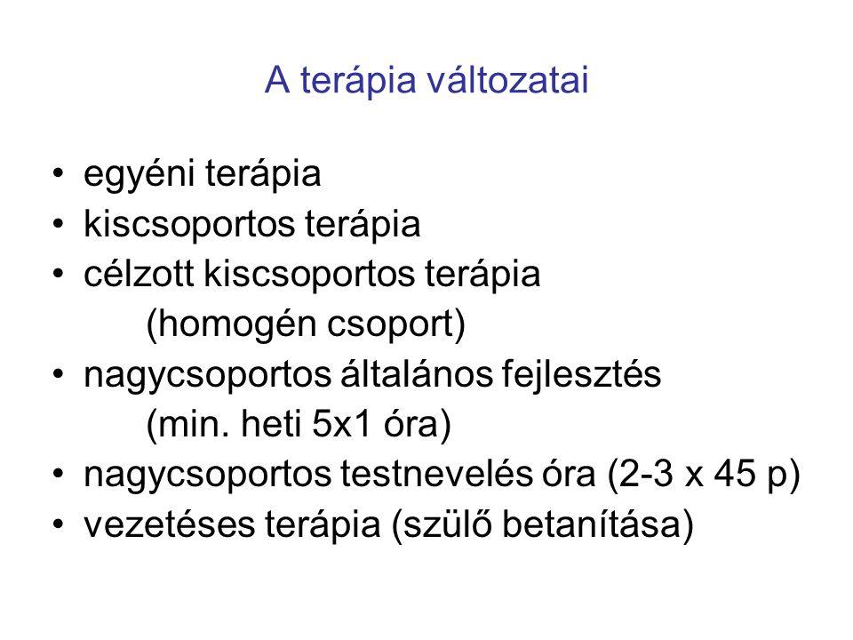 A terápia változatai •egyéni terápia •kiscsoportos terápia •célzott kiscsoportos terápia (homogén csoport) •nagycsoportos általános fejlesztés (min. h