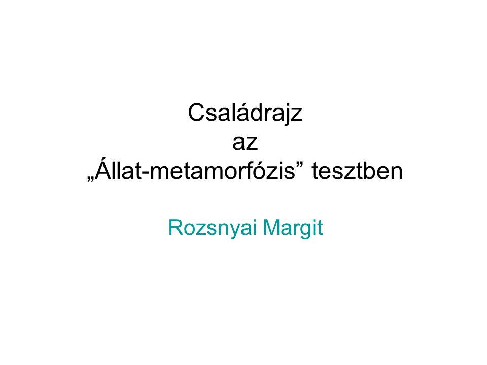 """Családrajz az """"Állat-metamorfózis tesztben Rozsnyai Margit"""