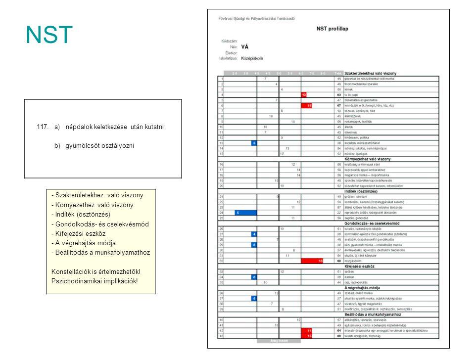 NST - Szakterületekhez való viszony - Környezethez való viszony - Indíték (ösztönzés) - Gondolkodás- és cselekvésmód - Kifejezési eszköz - A végrehajt