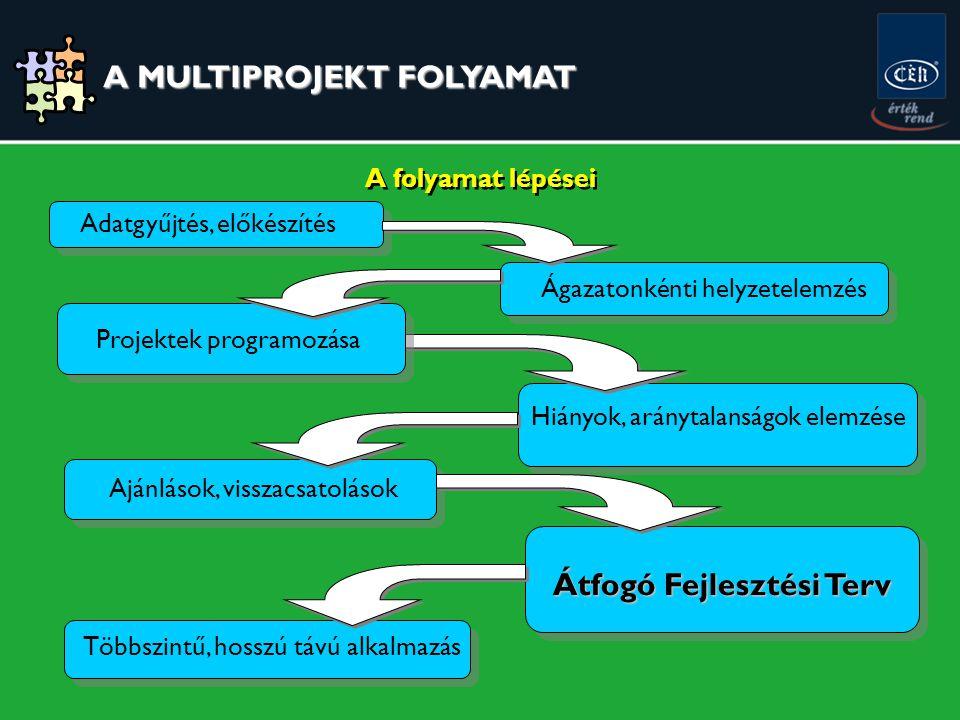 A folyamat lépései Adatgyűjtés, előkészítés Ágazatonkénti helyzetelemzés Hiányok, aránytalanságok elemzése Ajánlások, visszacsatolások Átfogó Fejlesztési Terv Többszintű, hosszú távú alkalmazás Projektek programozása A MULTIPROJEKT FOLYAMAT A MULTIPROJEKT FOLYAMAT