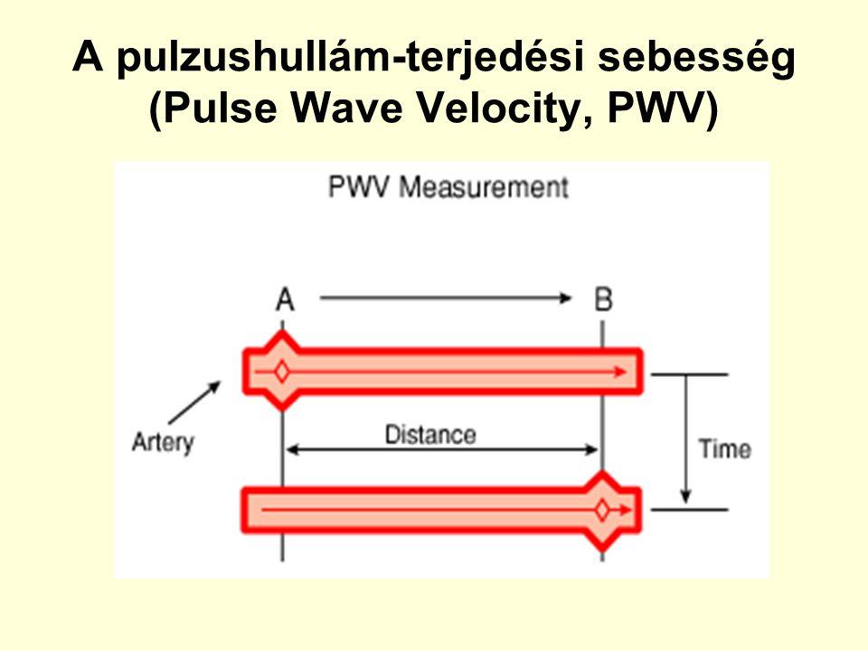 A pulzushullám-terjedési sebesség (Pulse Wave Velocity, PWV)