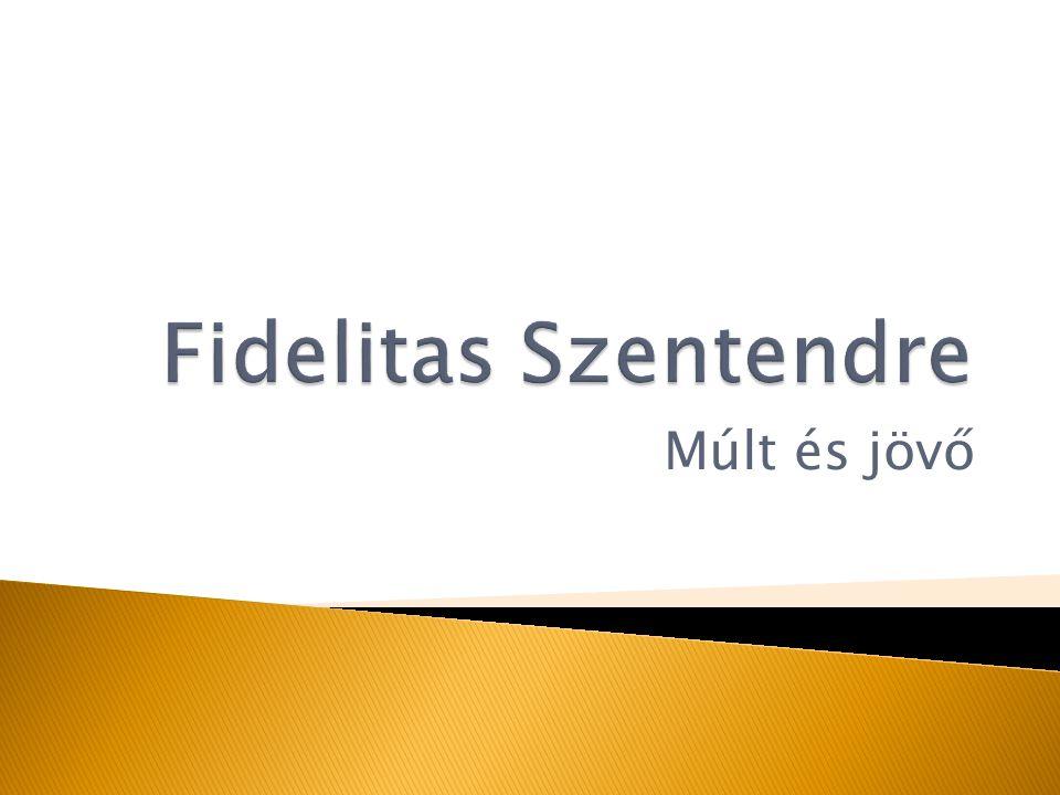 Közösségteremtés Értékes programok Fiatalok érdekképviselete Nemzeti szabadelvű és keresztény értékrend A magyar kultúra továbbadása Környezetünk védelme Határon túli magyar kapcsolatok
