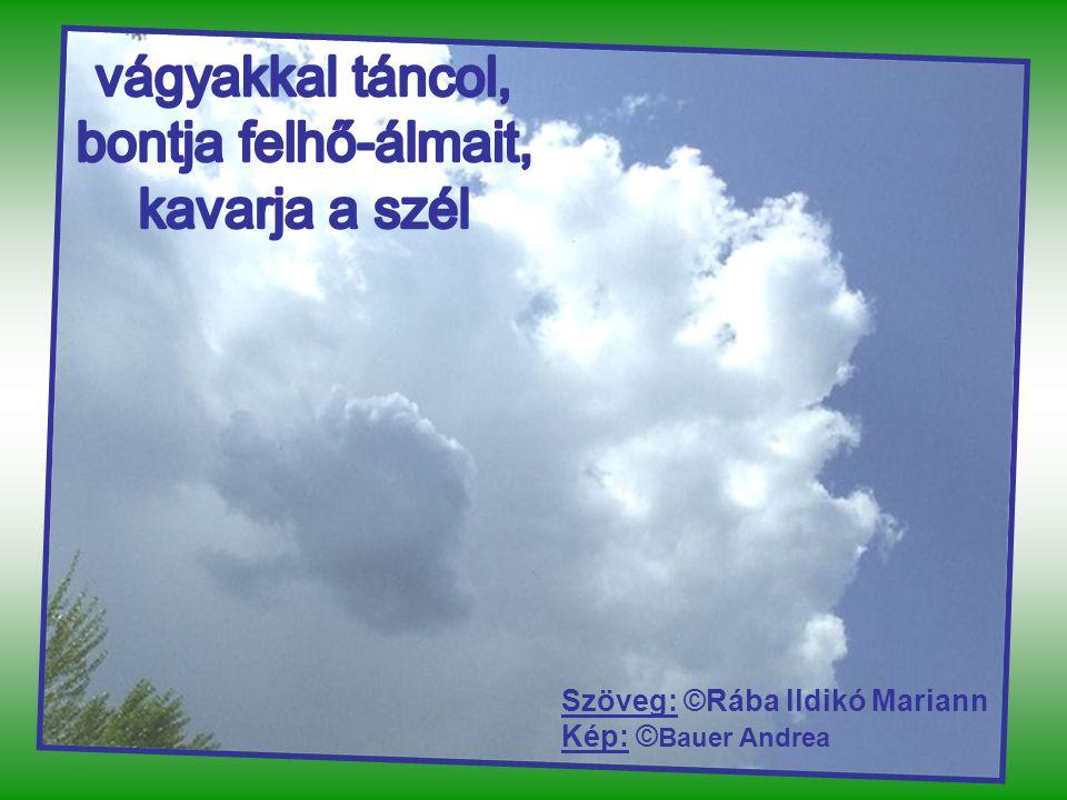 Szöveg: ©Rába Ildikó Mariann Kép: © Bauer Andrea