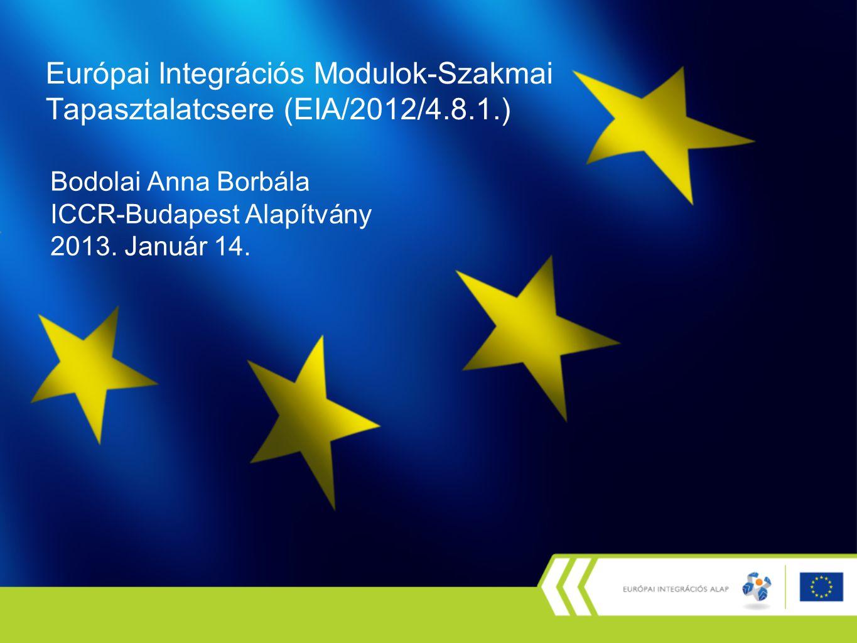 Bodolai Anna Borbála ICCR-Budapest Alapítvány 2013.
