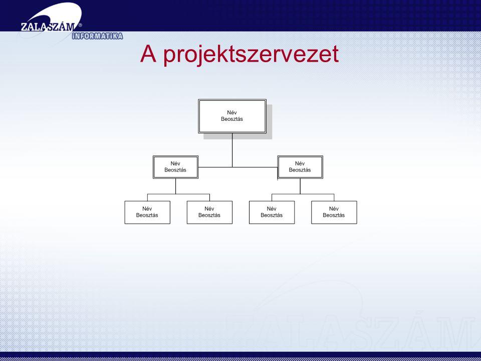 A projektszervezet
