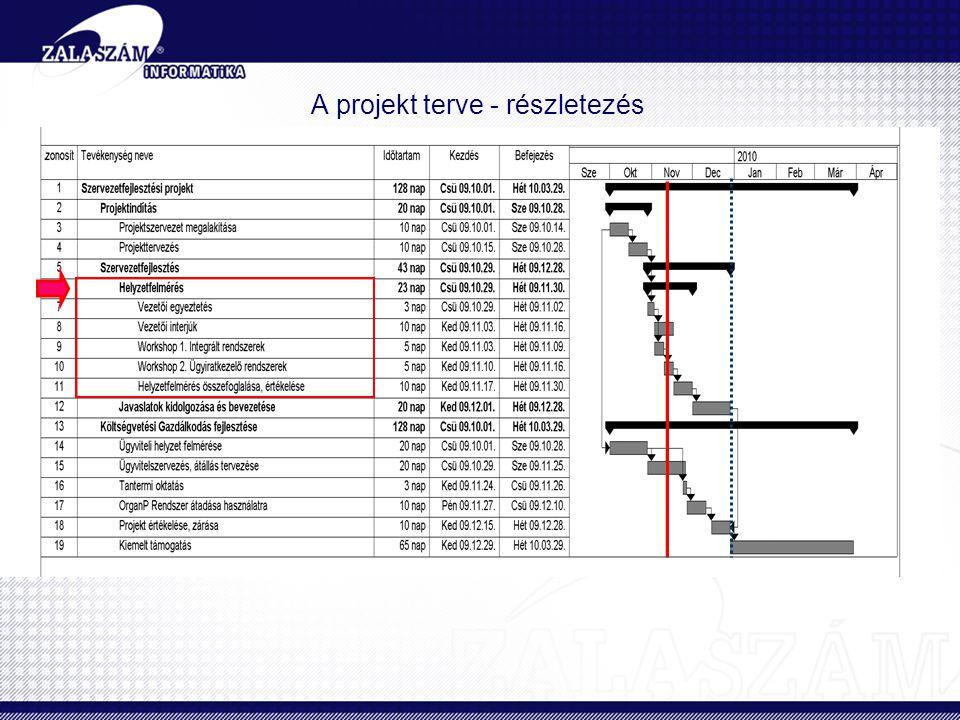 A projekt terve - részletezés