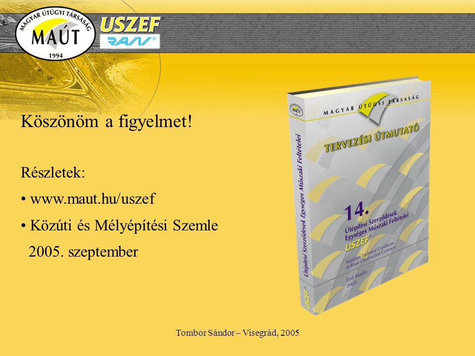 Tombor Sándor – Visegrád, 2005 Köszönöm a figyelmet.