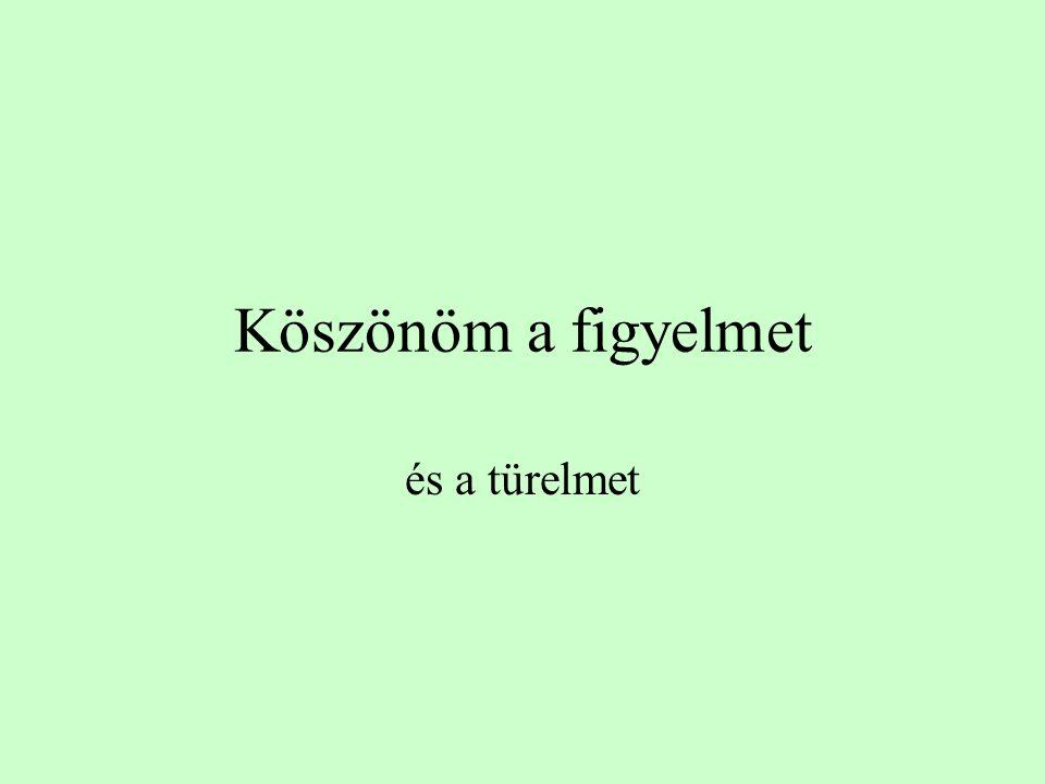 Összefoglalva •A szókezdet kiemelkedő jelentősége a hozzáférésben a magyarban is nyilvánvaló •A szófelismerés érzékenyebb az entrópia értékekre és az