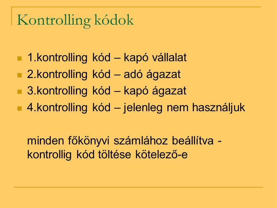 Kontrolling kódok  1.kontrolling kód – kapó vállalat  2.kontrolling kód – adó ágazat  3.kontrolling kód – kapó ágazat  4.kontrolling kód – jelenle