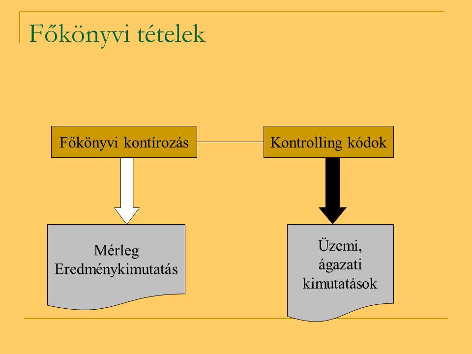 Főkönyvi tételek Főkönyvi kontírozásKontrolling kódok Mérleg Eredménykimutatás Üzemi, ágazati kimutatások