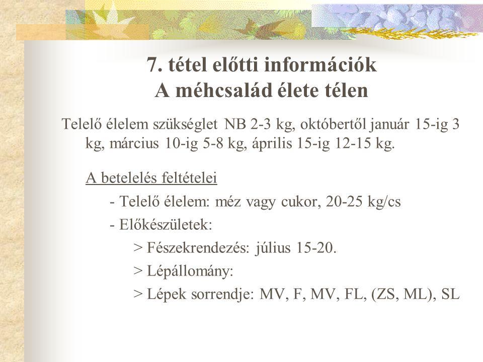 7. tétel előtti információk A méhcsalád élete télen Telelő élelem szükséglet NB 2-3 kg, októbertől január 15-ig 3 kg, március 10-ig 5-8 kg, április 15