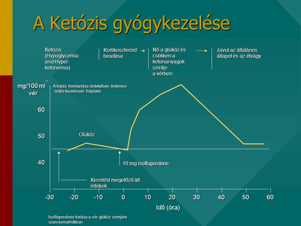 A Ketózis gyógykezelése Ketózis (Hypoglycemia and Hyper- ketonemia) Kortikoszteroid beadása Nő a glükóz és csökken a ketonanyagok szintje a vérben Javul az általános állapot és az étvágy Idő (óra) 40 50 60 mg/100 ml vér -30-20-100102030405060 A hatás fenntartása érdekében érdemes orális kezeléssel folytatni orális kezeléssel folytatni Glükóz 10 mg isoflupredone Kezelést megelőző átl.