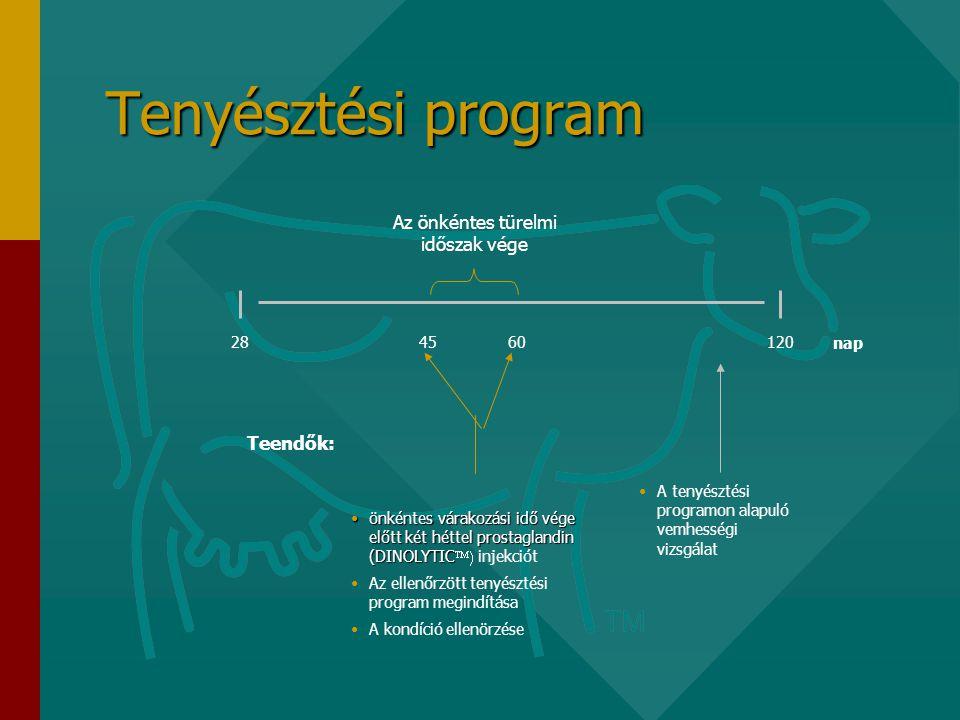 Tenyésztési program 60 nap 12028 Az önkéntes türelmi időszak vége •önkéntes várakozási idő vége előtt két héttel prostaglandin (DINOLYTIC •önkéntes várakozási idő vége előtt két héttel prostaglandin (DINOLYTIC  injekciót •Az ellenőrzött tenyésztési program megindítása •A kondíció ellenörzése •A tenyésztési programon alapuló vemhességi vizsgálat Teendők: 45