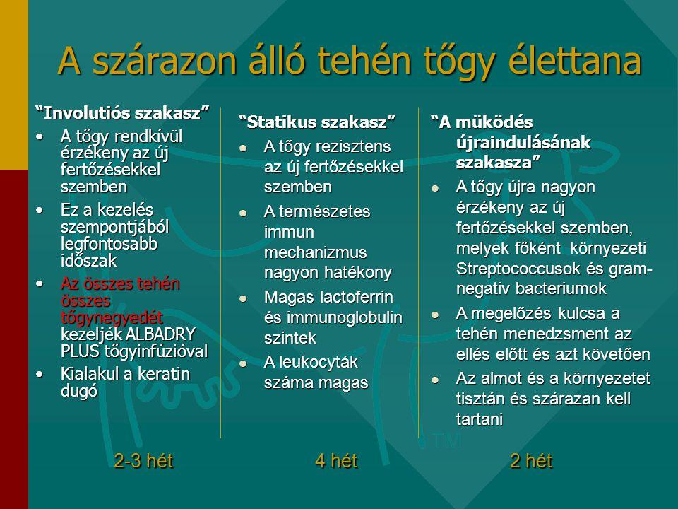 A szárazon álló tehén tőgy élettana Involutiós szakasz •A tőgy rendkívül érzékeny az új fertőzésekkel szemben •Ez a kezelés szempontjából legfontosabb időszak •Az összes tehén összes tőgynegyedét kezeljék ALBADRY PLUS tőgyinfúzióval •Kialakul a keratin dugó Statikus szakasz  A tőgy rezisztens az új fertőzésekkel szemben  A természetes immun mechanizmus nagyon hatékony  Magas lactoferrin és immunoglobulin szintek  A leukocyták száma magas A müködés újraindulásának szakasza  A tőgy újra nagyon érzékeny az új fertőzésekkel szemben, melyek főként környezeti Streptococcusok és gram- negativ bacteriumok  A megelőzés kulcsa a tehén menedzsment az ellés előtt és azt követően  Az almot és a környezetet tisztán és szárazan kell tartani 2-3 hét 4 hét 2 hét