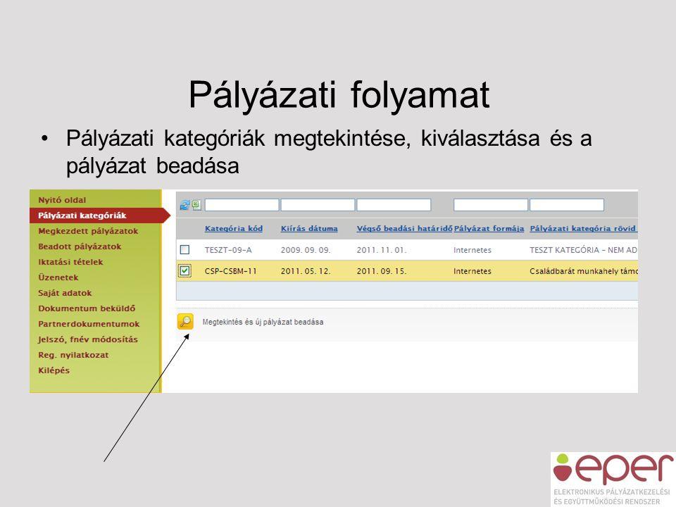 Pályázati folyamat •Pályázati kategóriák megtekintése, kiválasztása és a pályázat beadása