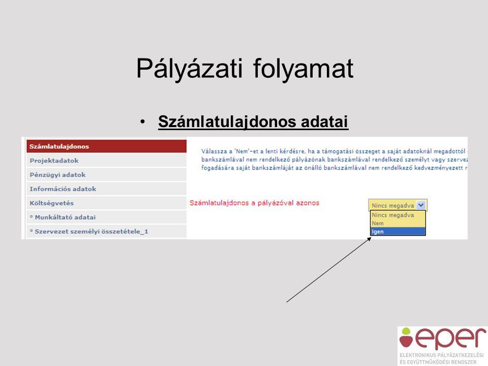 Pályázati folyamat •Számlatulajdonos adatai