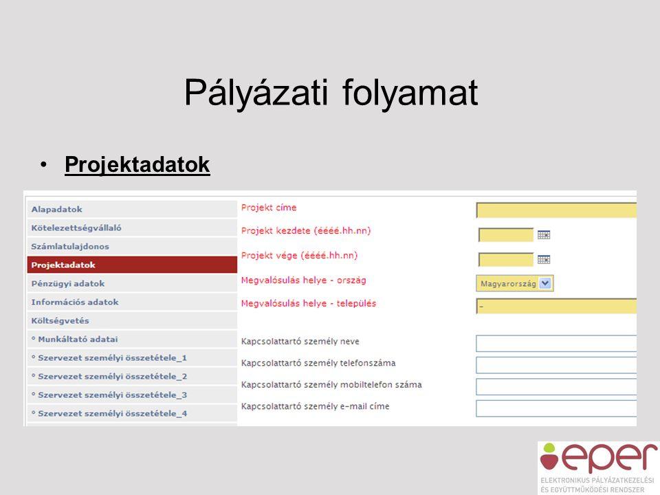 Pályázati folyamat •Projektadatok