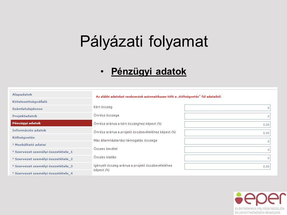 Pályázati folyamat •Pénzügyi adatok