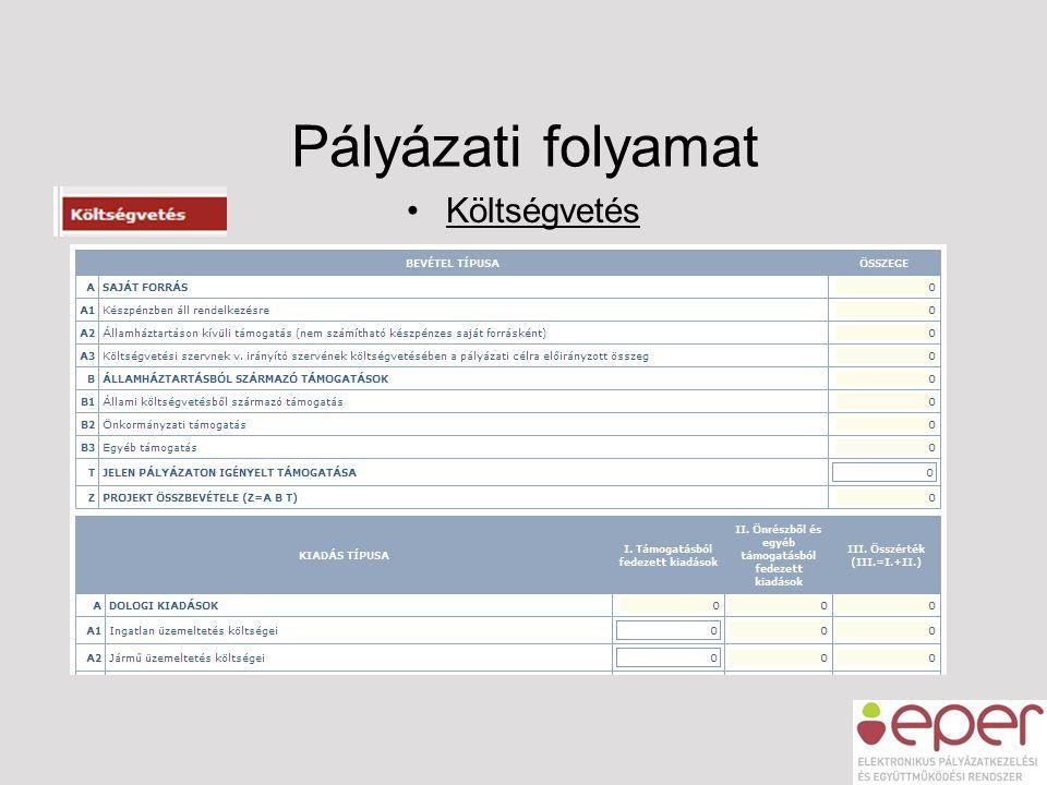 Pályázati folyamat •Költségvetés