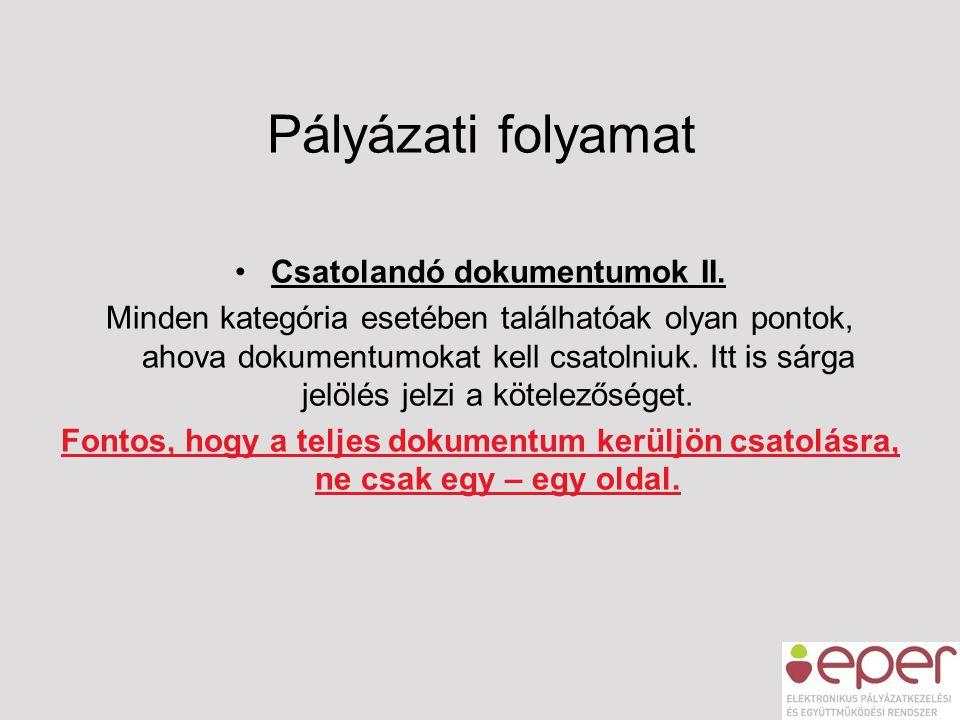 Pályázati folyamat •Csatolandó dokumentumok II. Minden kategória esetében találhatóak olyan pontok, ahova dokumentumokat kell csatolniuk. Itt is sárga