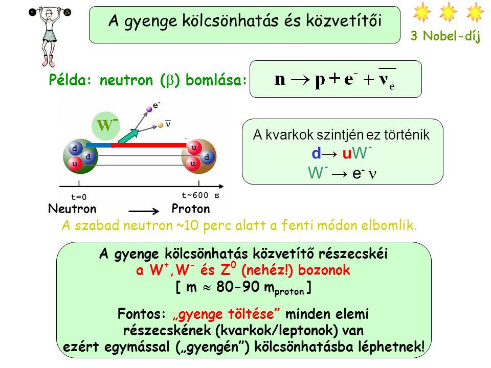 Az erős kölcsönhatás és közvetítői. Atommag Az erős k.h. tartja össze az atommag protonjait/neutronjait és az összetett részecskék (pl. a proton/neutr