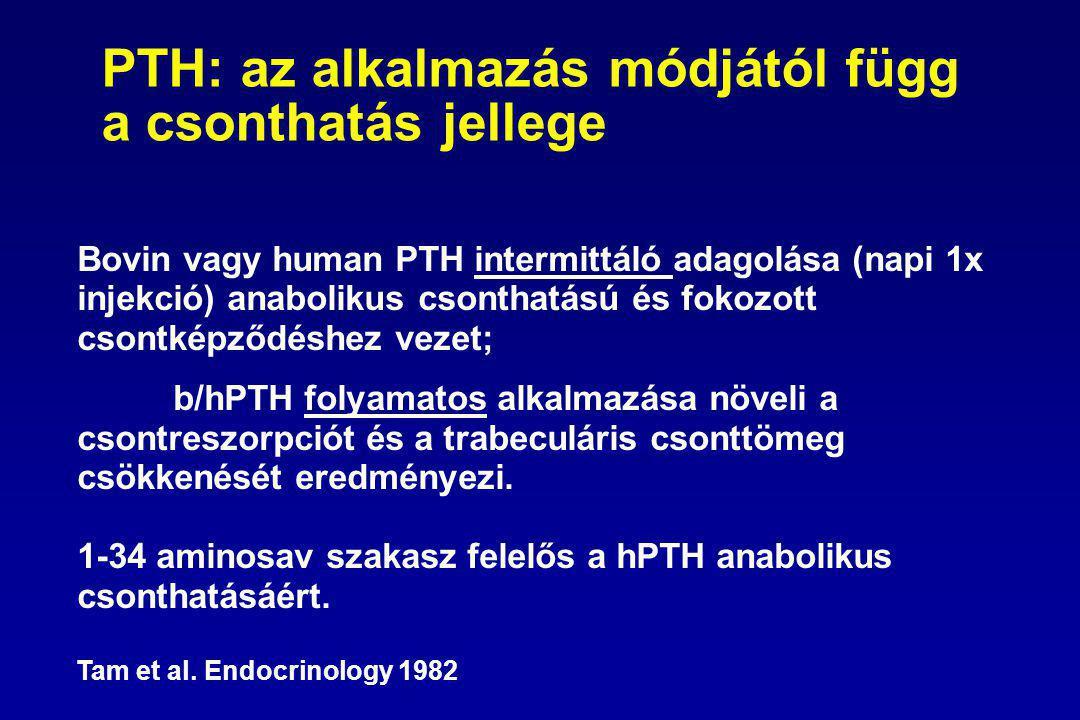 PTH: az alkalmazás módjától függ a csonthatás jellege Bovin vagy human PTH intermittáló adagolása (napi 1x injekció) anabolikus csonthatású és fokozott csontképződéshez vezet; b/hPTH folyamatos alkalmazása növeli a csontreszorpciót és a trabeculáris csonttömeg csökkenését eredményezi.