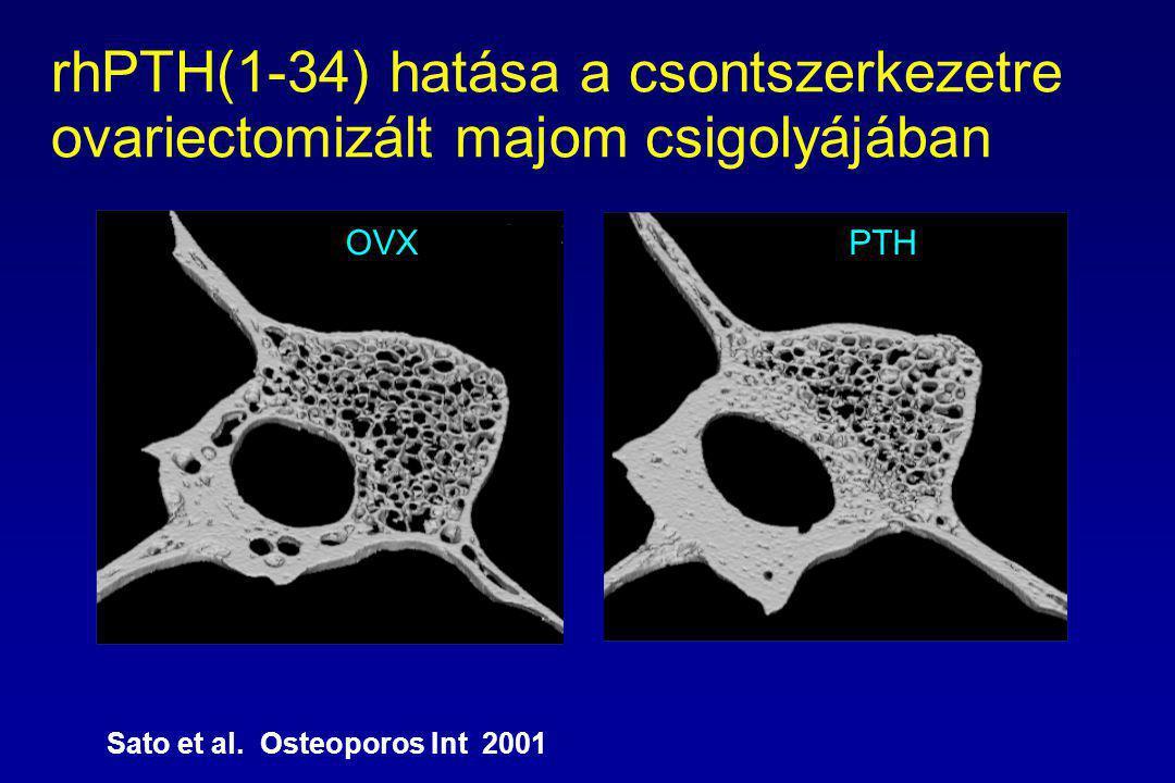 rhPTH(1-34) hatása a csontszerkezetre ovariectomizált majom csigolyájában OVXPTH Sato et al.