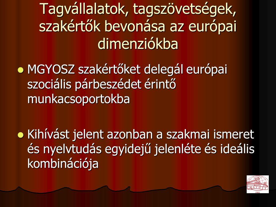Tagvállalatok, tagszövetségek, szakértők bevonása az európai dimenziókba  MGYOSZ szakértőket delegál európai szociális párbeszédet érintő munkacsoportokba  Kihívást jelent azonban a szakmai ismeret és nyelvtudás egyidejű jelenléte és ideális kombinációja