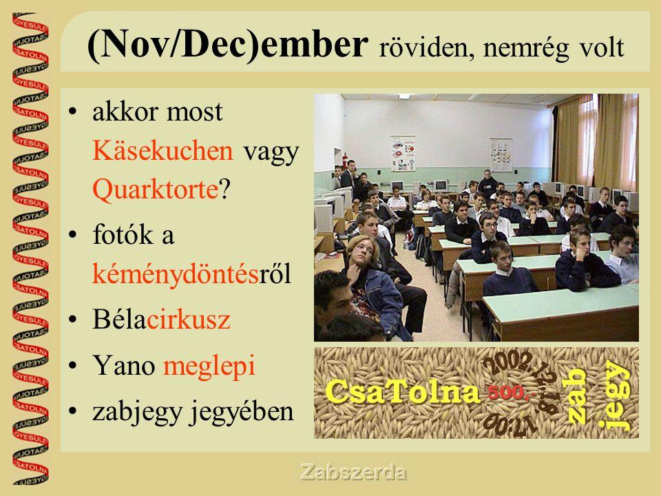 (Nov/Dec)ember röviden, nemrég volt •akkor most Käsekuchen vagy Quarktorte.
