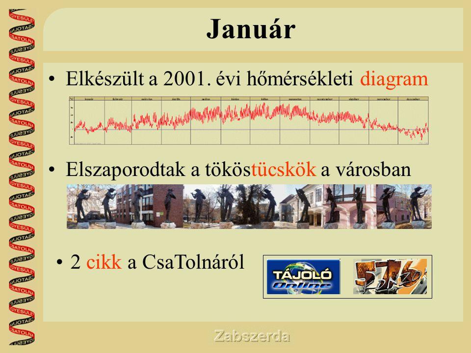 Január •Elkészült a 2001.