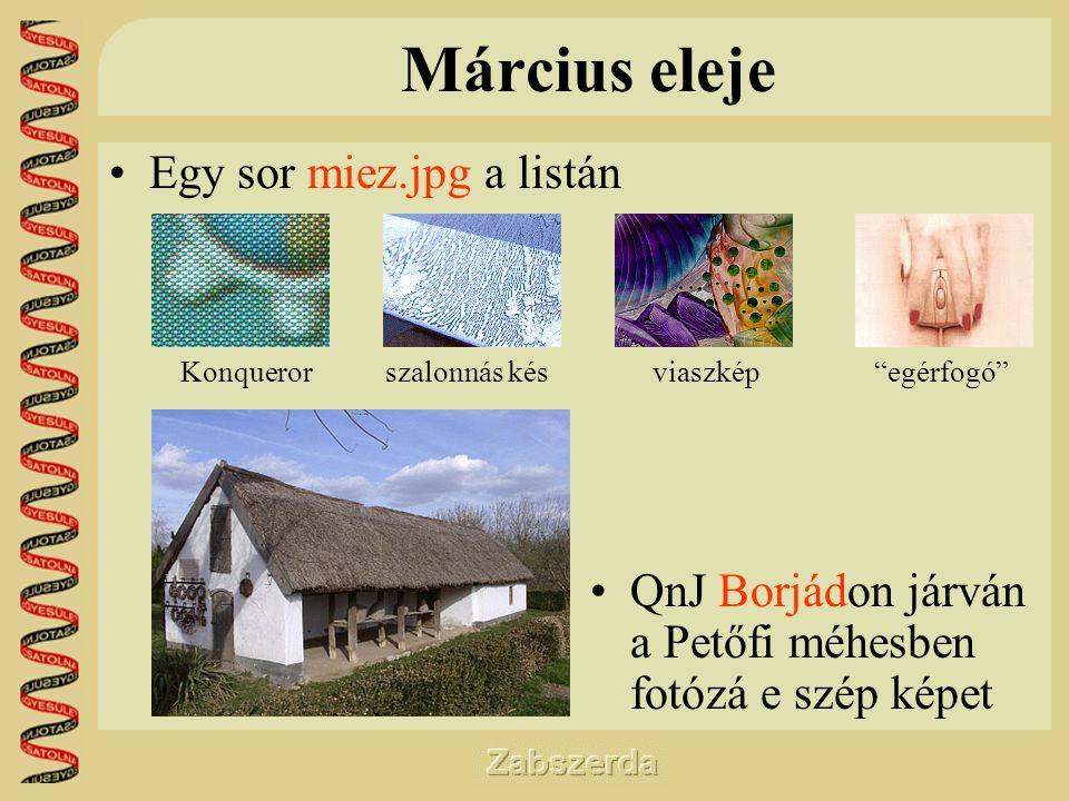 Március eleje •Egy sor miez.jpg a listán •QnJ Borjádon járván a Petőfi méhesben fotózá e szép képet Konquerorszalonnás késviaszkép egérfogó