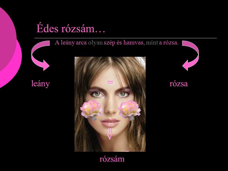 Édes rózsám… A leány arca olyan szép és hamvas, mint a rózsa. leányrózsa rózsám = =>