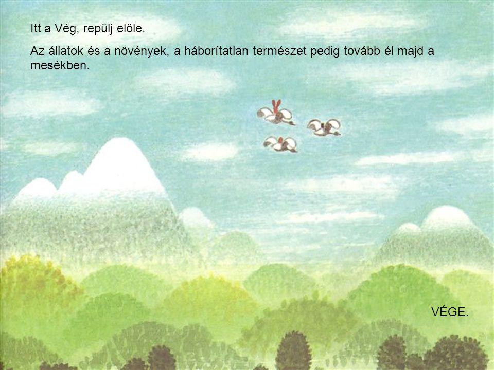 Itt a Vég, repülj előle. Az állatok és a növények, a háborítatlan természet pedig tovább él majd a mesékben. VÉGE.
