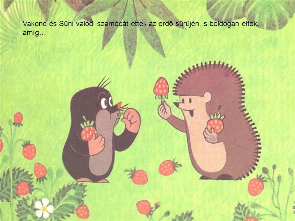 Vakond és Süni valódi szamócát ettek az erdő sűrűjén, s boldogan éltek, amíg…
