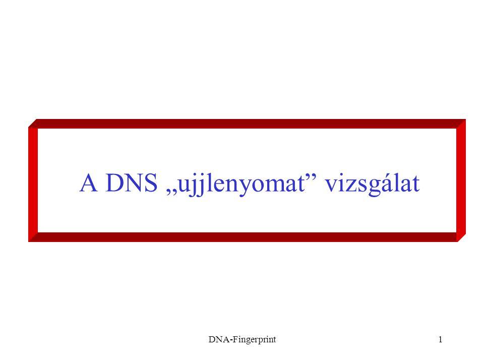 """DNA-Fingerprint1 A DNS """"ujjlenyomat"""" vizsgálat"""
