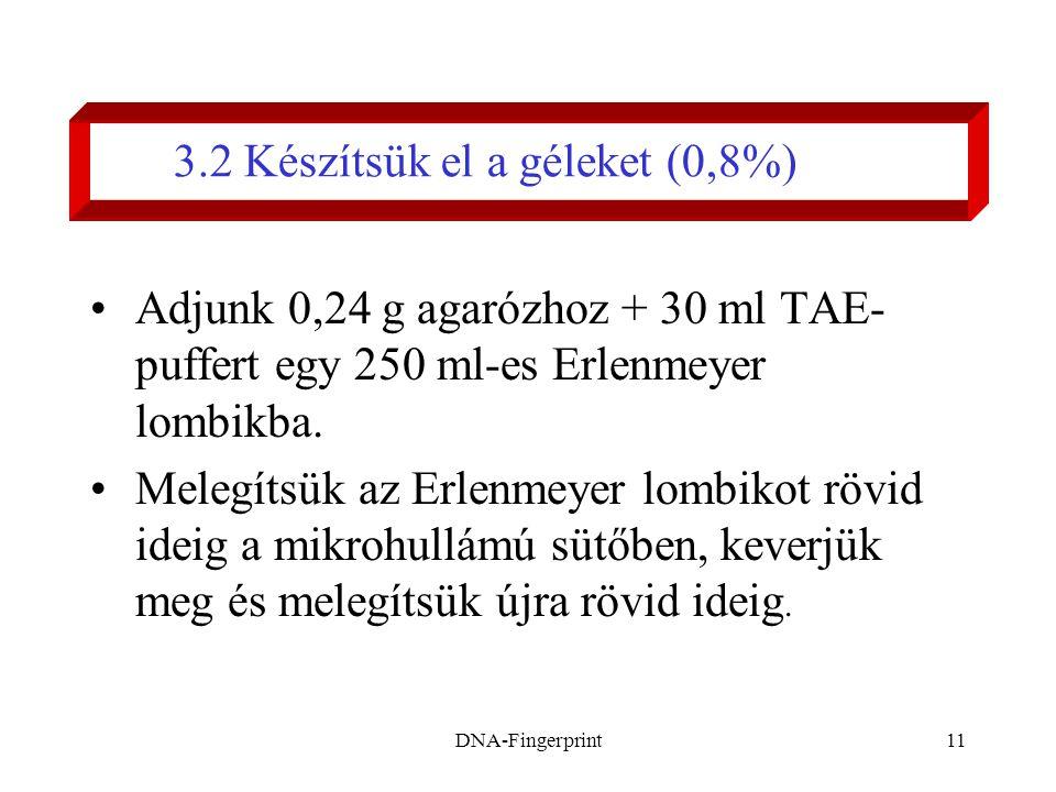 DNA-Fingerprint11 3.2 Készítsük el a géleket (0,8%) •Adjunk 0,24 g agarózhoz + 30 ml TAE- puffert egy 250 ml-es Erlenmeyer lombikba. •Melegítsük az Er