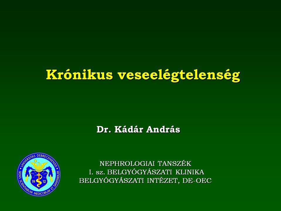 Krónikus veseelégtelenség NEPHROLOGIAI TANSZÉK I. sz. BELGYÓGYÁSZATI KLINIKA I. sz. BELGYÓGYÁSZATI KLINIKA BELGYÓGYÁSZATI INTÉZET, DE-OEC Dr. Kádár An