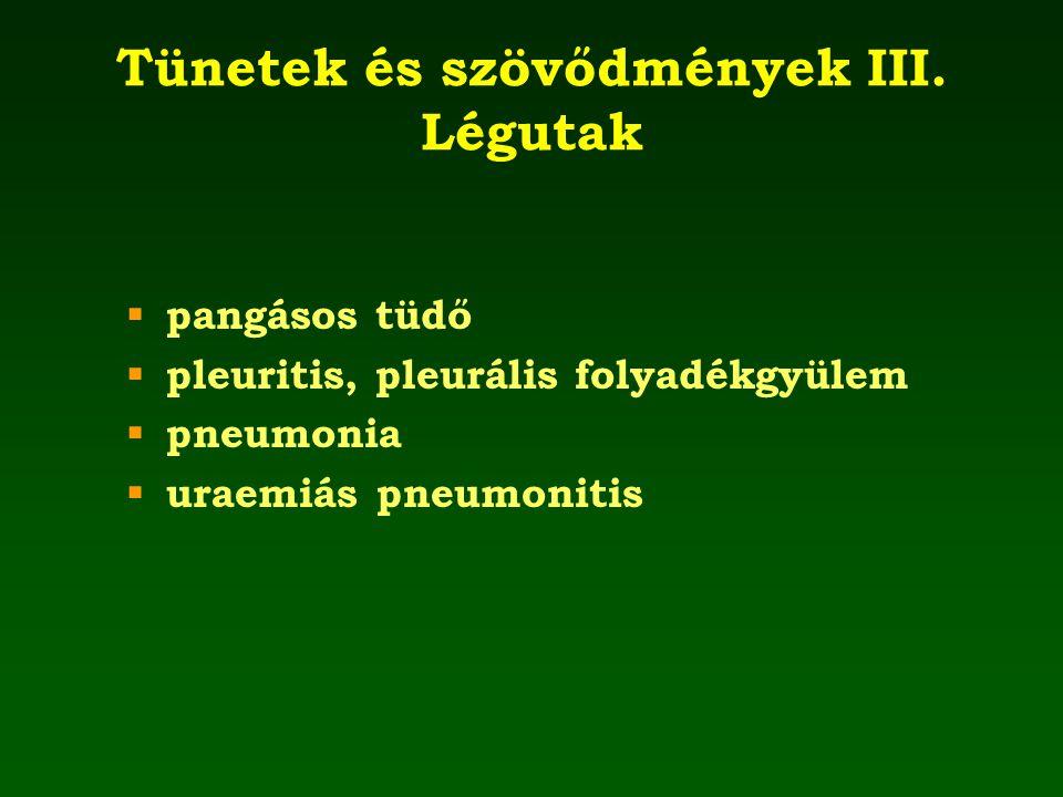 Tünetek és szövődmények III. Légutak  pangásos tüdő  pleuritis, pleurális folyadékgyülem  pneumonia  uraemiás pneumonitis