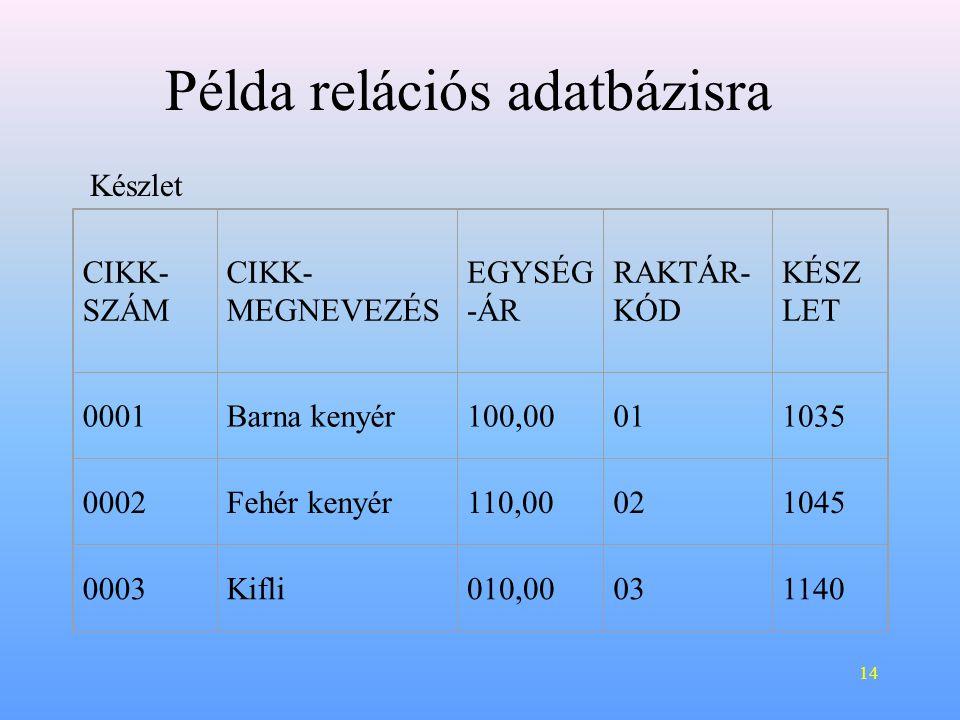 14 CIKK- SZÁM CIKK- MEGNEVEZÉS EGYSÉG -ÁR RAKTÁR- KÓD KÉSZ LET 0001Barna kenyér100,00011035 0002Fehér kenyér110,00021045 0003Kifli010,00031140 Példa relációs adatbázisra Készlet