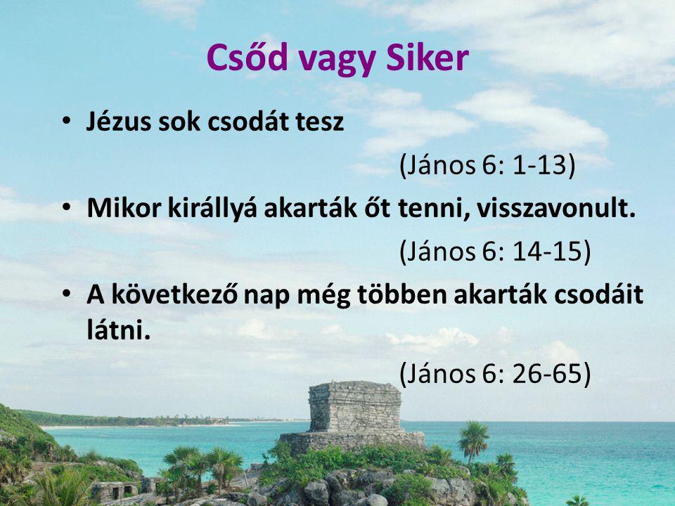 Csőd vagy Siker • Jézus sok csodát tesz (János 6: 1-13) • Mikor királlyá akarták őt tenni, visszavonult. (János 6: 14-15) • A következő nap még többen