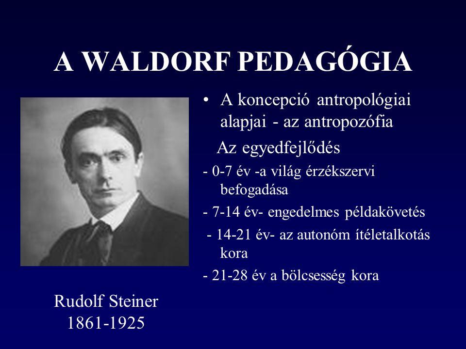 A WALDORF PEDAGÓGIA •A koncepció antropológiai alapjai - az antropozófia Az egyedfejlődés - 0-7 év -a világ érzékszervi befogadása - 7-14 év- engedelmes példakövetés - 14-21 év- az autonóm ítéletalkotás kora - 21-28 év a bölcsesség kora Rudolf Steiner 1861-1925