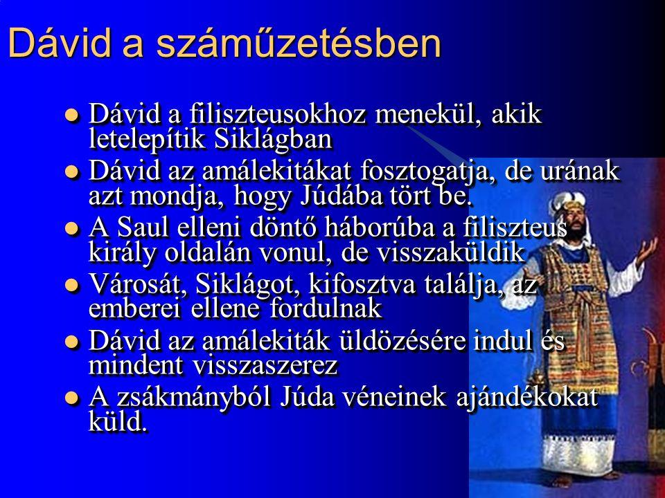 8 Dávid király Hebronban  Saul halála után Dávidot Júda törzse királyává teszi  Saul fiának hadvezére átállna Dávidhoz, de Joáv megöli  Mikál visszatér Dávidhoz, akinek 6 fia születik