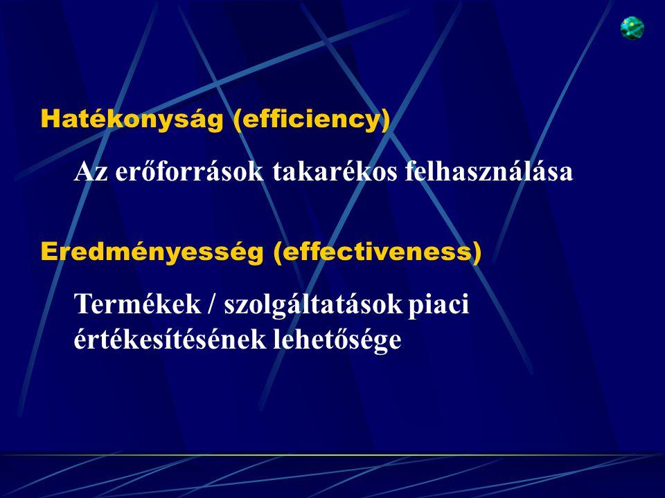 Eredményesség (effectiveness) Termékek / szolgáltatások piaci értékesítésének lehetősége Hatékonyság (efficiency) Az erőforrások takarékos felhasználása