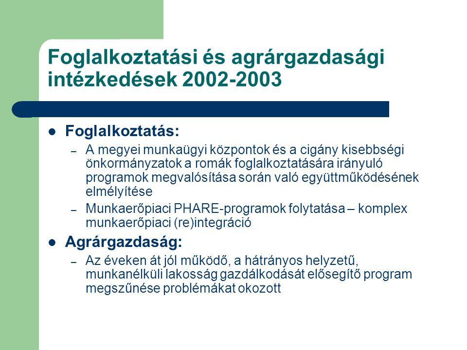 Foglalkoztatási és agrárgazdasági intézkedések 2002-2003  Foglalkoztatás: – A megyei munkaügyi központok és a cigány kisebbségi önkormányzatok a romák foglalkoztatására irányuló programok megvalósítása során való együttműködésének elmélyítése – Munkaerőpiaci PHARE-programok folytatása – komplex munkaerőpiaci (re)integráció  Agrárgazdaság: – Az éveken át jól működő, a hátrányos helyzetű, munkanélküli lakosság gazdálkodását elősegítő program megszűnése problémákat okozott