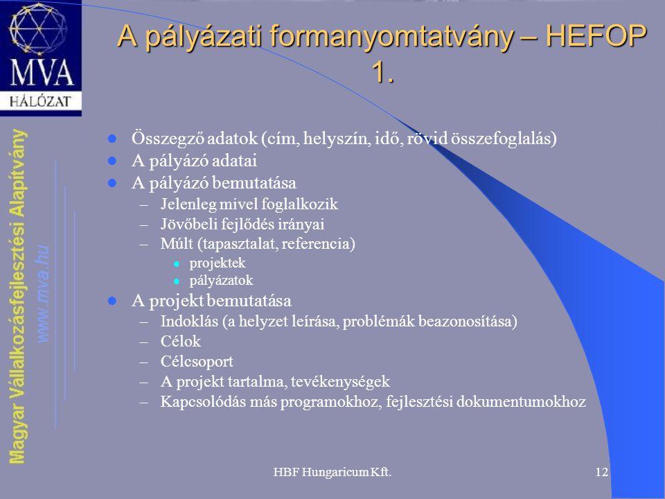 HBF Hungaricum Kft.12 A pályázati formanyomtatvány – HEFOP 1.  Összegző adatok (cím, helyszín, idő, rövid összefoglalás)  A pályázó adatai  A pályá
